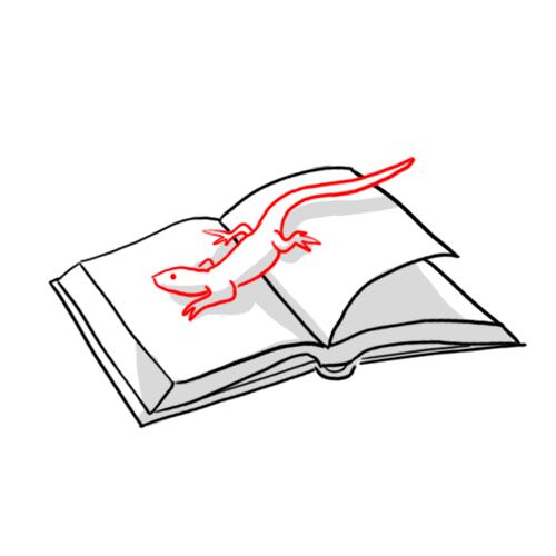 Lézarde   Succession de blancs donnant un effet visuel d'une fissure en zigzag dans la page